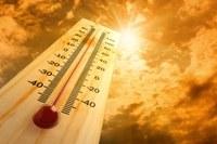 Экстренное предупреждение: аномально жаркая погода