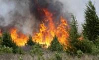 О ситуации с пожарами на территории района