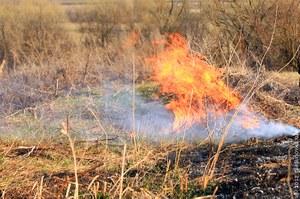 Оперативная информация: горимость