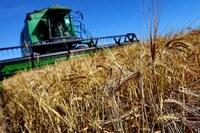 Поддержка сельхозпроизводителей Челябинской области продолжится
