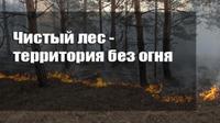 """В Агаповском районе проходит акция """"Чистый лес - территория без огня"""""""