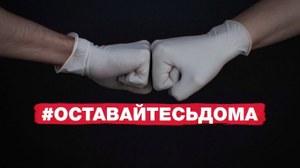 В рамках профилактической акции «Ваш участковый» полицейские Челябинской области запускают челлендж #Будьответственнымостаньсядома